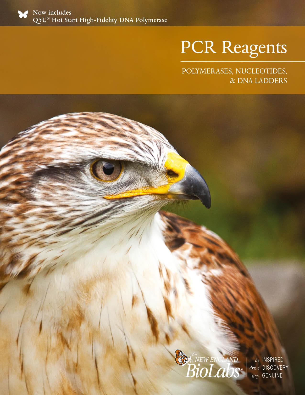 PCR Reagent Brochure