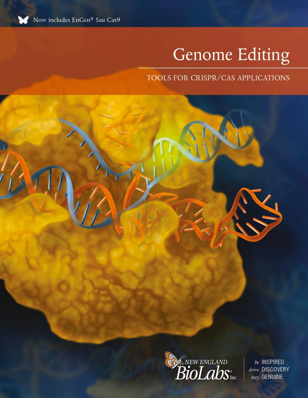 Genome Editing Broschüre