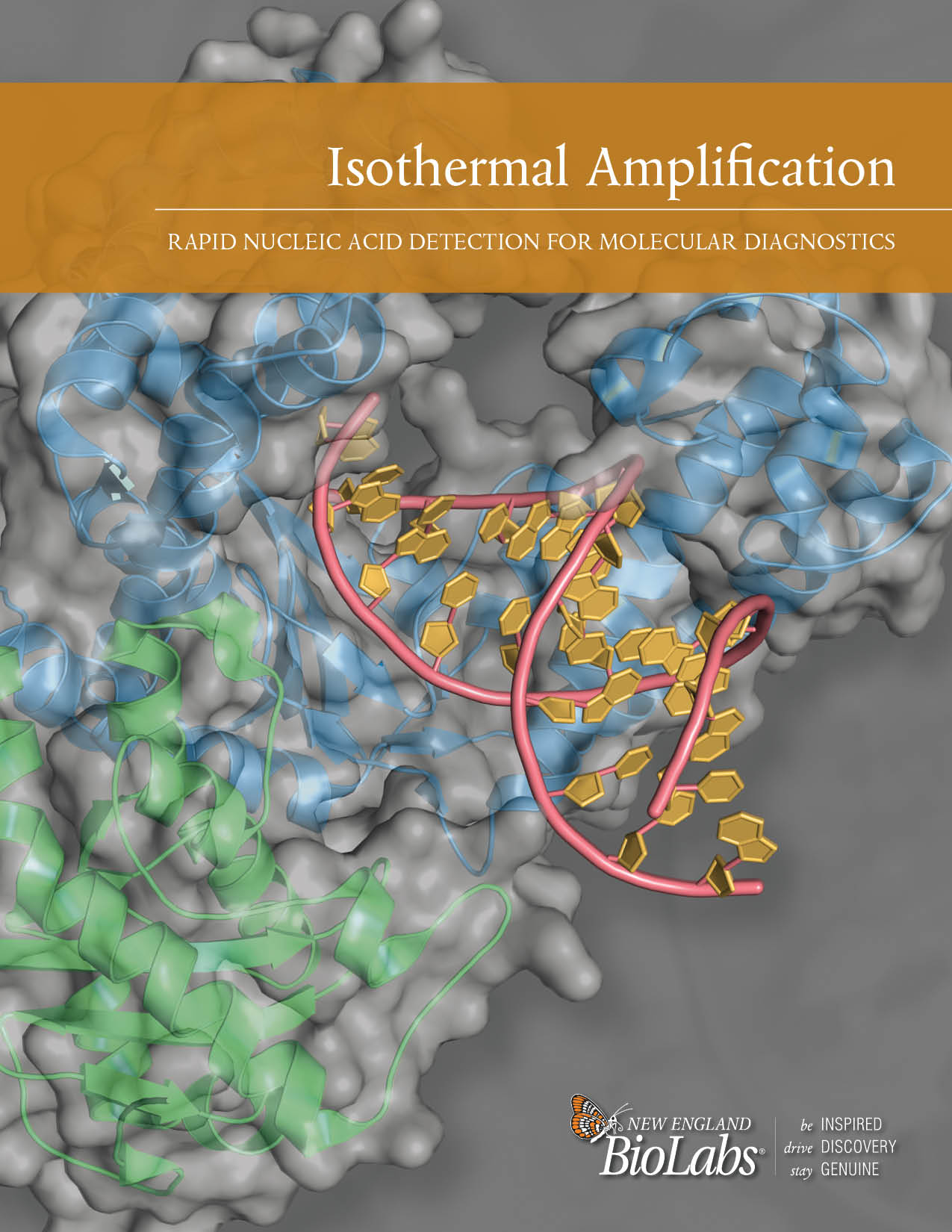Isothermal DNA Amplification Brochure