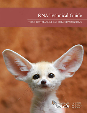 NEB RNA Technical Guide