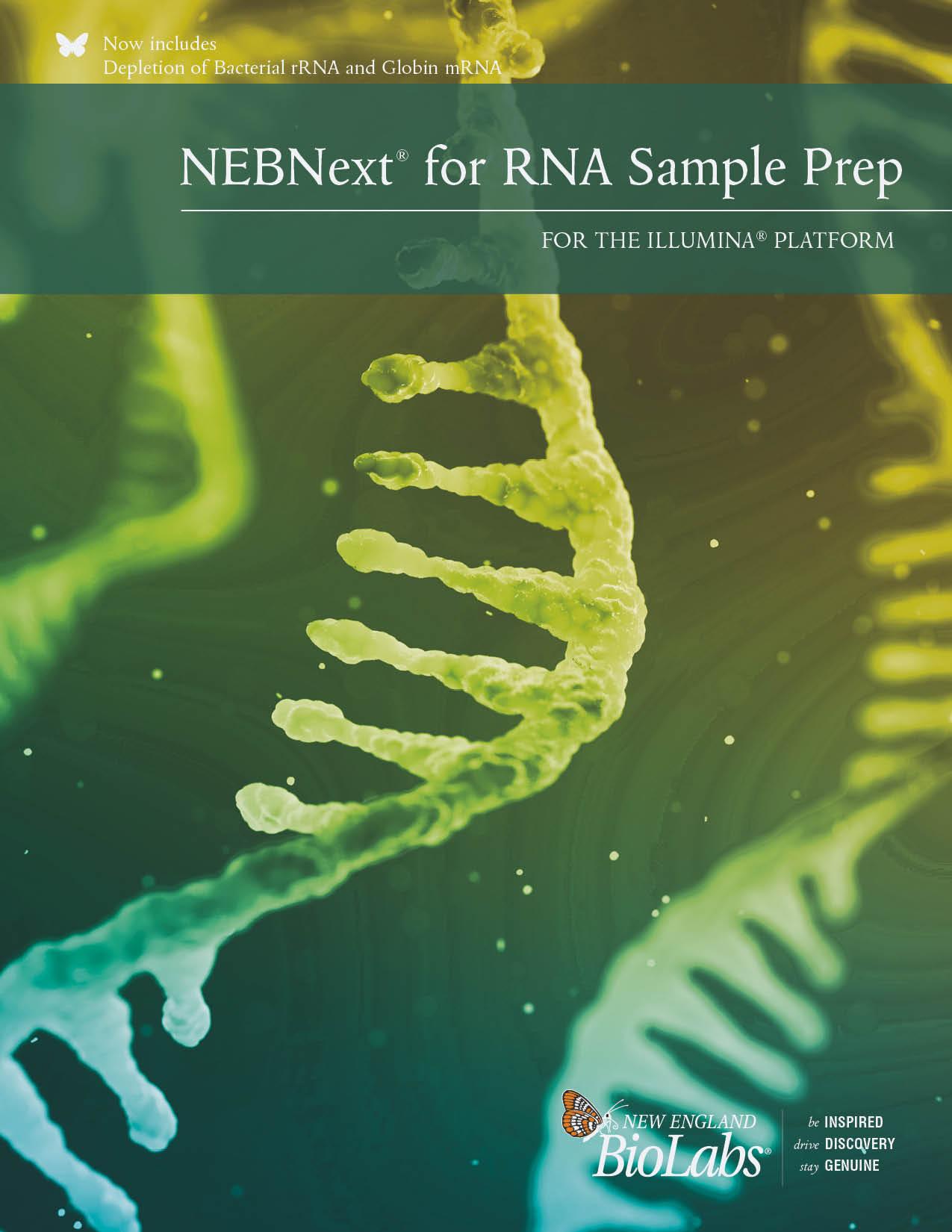 NEBNext RNA Illumina Broschüre