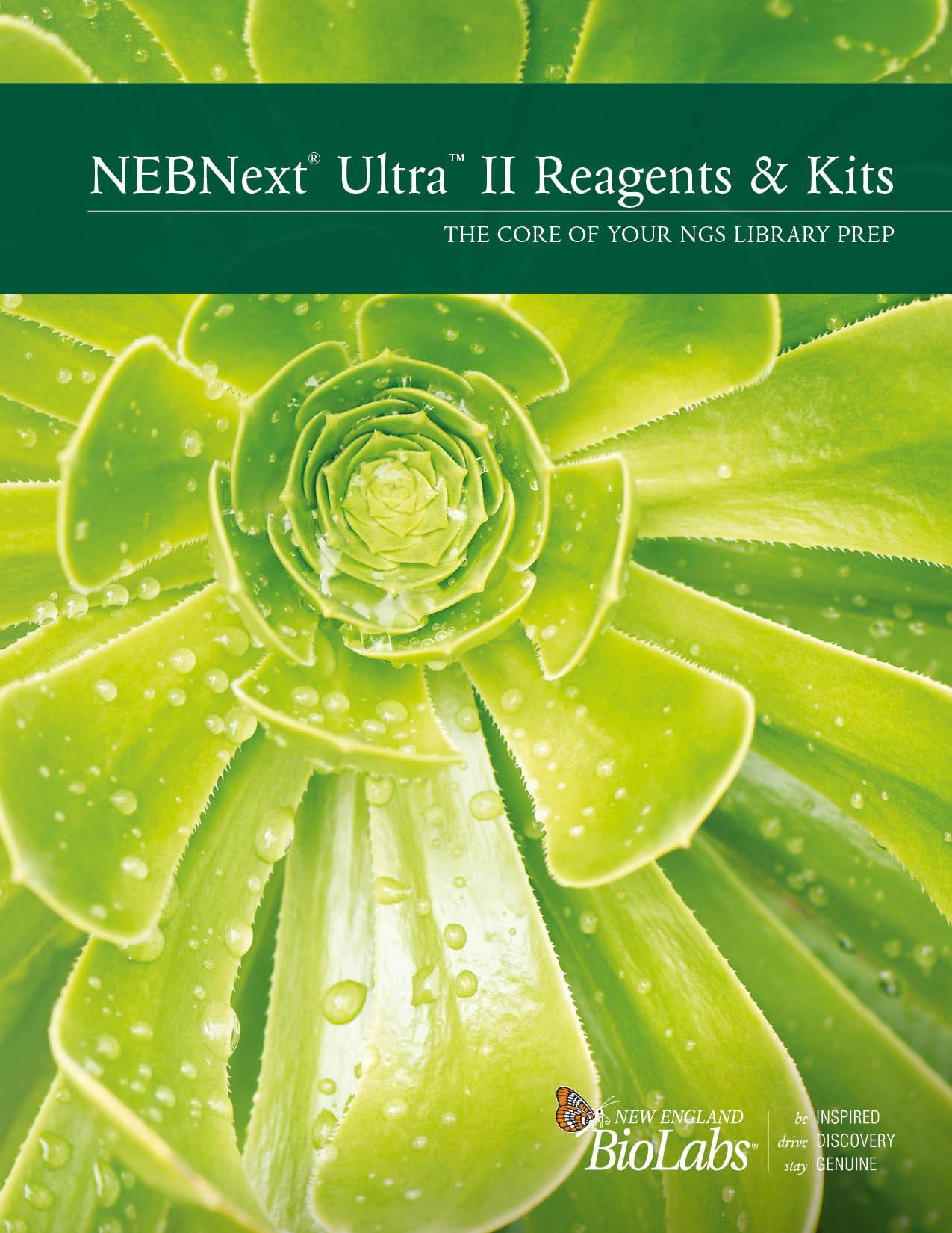 NEBNext Ultra II Broschüre