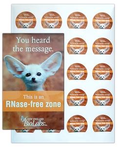 RNase Free Zone Sticker Pack