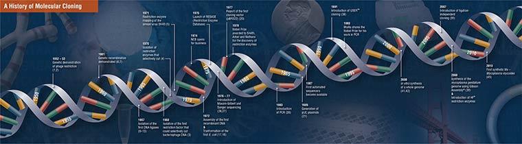 Zeitleiste Klonierung - A History of Molecular Cloning