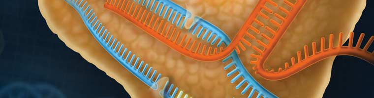 Genome Editing Header