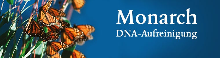 Monarch DNA Aufreinigung