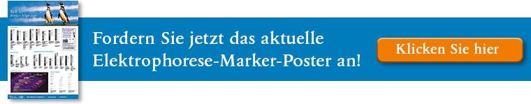 neb_banner_marker_poster