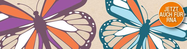 Monarch RNA Aufreinigung