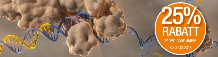 Sonderpreise auf PCR Amplifikationsprodukte
