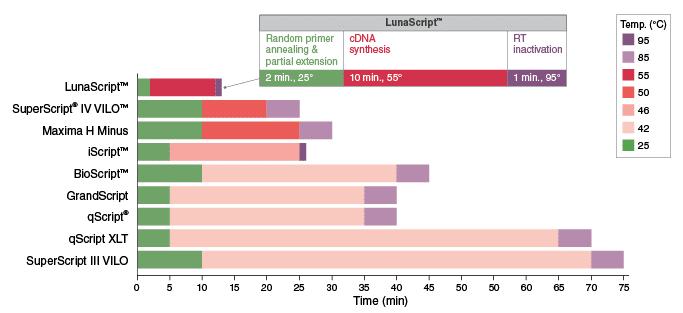 LunaScript im Vergleich zu anderen RT-Systemen