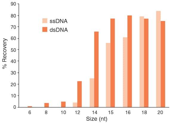 Aufreinigung von kurzer DNA mit Monarch