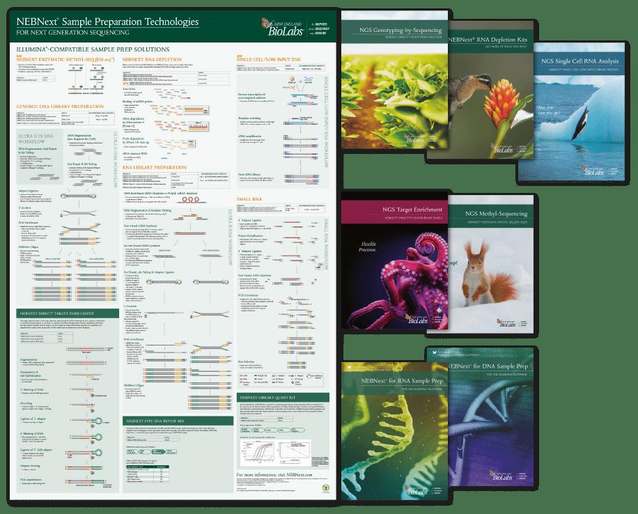 Next Generation Sequencing Brochures