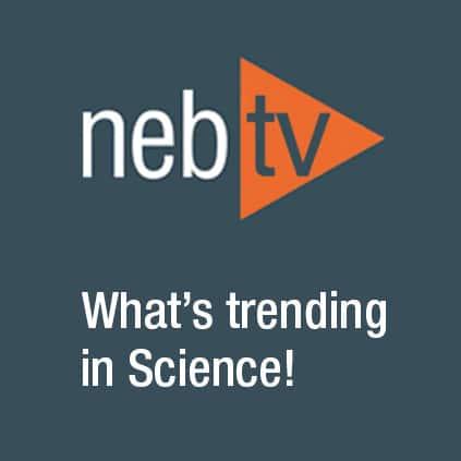 NEB TV